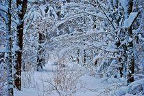 Winter in München... 3 von loewenherz-artwork