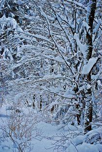 Winter in München... 7 von loewenherz-artwork