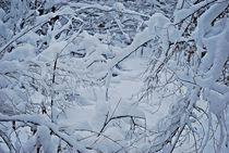 Winter in München... 5 von loewenherz-artwork