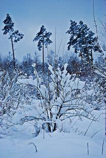 Winter in München... 1 von loewenherz-artwork
