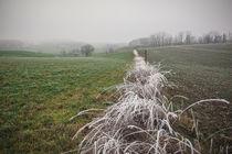Winterlandschaft mit Nebel und Raureif II von Christine Horn