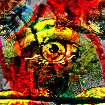 The Eye von FABIANO DOS REIS SILVA