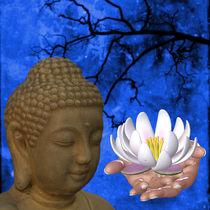 Buddha Flower Hand von Conny Dambach