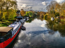 The View Upriver From Whitchurch Toll Bridge von Ian Lewis
