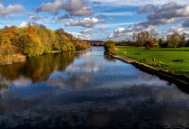 Reflections At Pangbourne Meadows von Ian Lewis