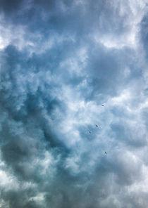 beneath the storm von Erik Mugira