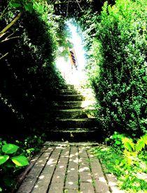 Garten auf dem Land von vivaphoto