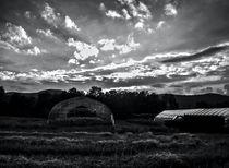 Reclaimed Greenhouse 1 von James Aiken