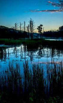 Swampland Sunrise 1 by James Aiken