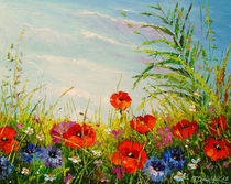 Poppies in the field by Olha Darchuk