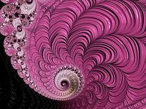 Pink Baroque Spiral von Elisabeth  Lucas
