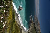 HWY #1 - California by usaexplorer