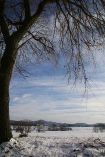Winterbild von Ingrid Bienias
