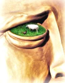 Eine wahre Augenweide by garrulus-glandarius