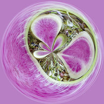 Radish and Sprouts Orb 1 von Elisabeth  Lucas