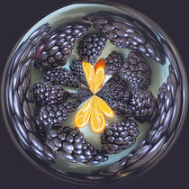 Blackberry and Kumquat Orb by Elisabeth  Lucas