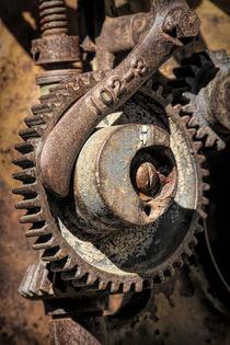 Cogwheel Macro von Elisabeth  Lucas