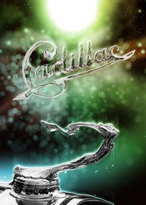 Cadillac hood ornament von Carlos Enrique Duka
