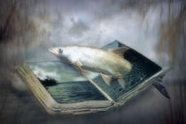 A book of water by garrulus-glandarius