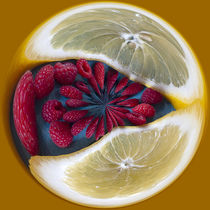 Lemon and Berry Orb 1 von Elisabeth  Lucas