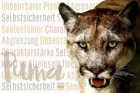 Puma-wesen-6000