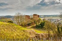 Burg Gutenburg 47 von Erhard Hess