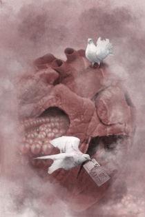 A heart for sale von garrulus-glandarius