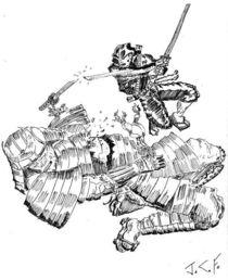 Ninja vs. Samurai von Joel Furches