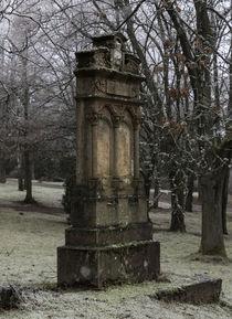 Grabstein im Winter von Thomas Schulz