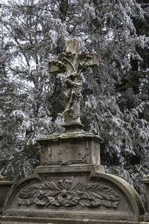 Winterliches Grab von Thomas Schulz