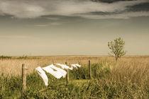 Wäsche im Wind von Armin Redöhl