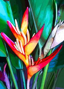 Heliconia Close Up Digital Painting von bluedarkart-lem