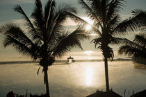 Der exotische Traum. Palmen, Wasser, Sonne. Inle-See. Myanmar. von Hartmut Binder