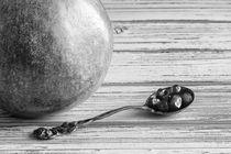 Pomegranate and Seeds BW von Elisabeth  Lucas