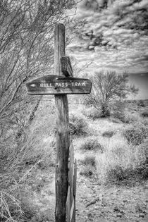 Bull Pass Trail von Elisabeth  Lucas