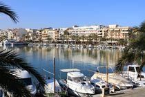 Port d'Alcúdia  - Sommer, Sonne, Strand und Meer  von wirmallorca