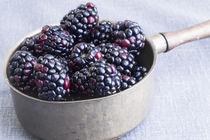 Blackberries von Elisabeth  Lucas