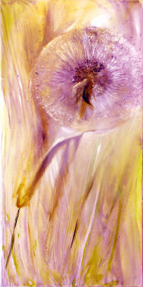 Pusteblume by Annette Schmucker