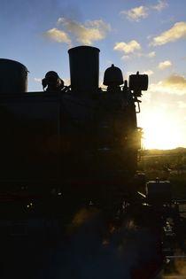 Alte Lokomotive von Claudia Evans