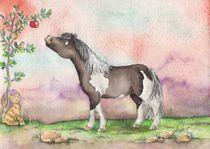 Kleines Pony von lona-azur