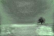 Der Baum by Claudia Evans