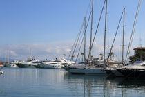Am Hafen von Alcudia - im Norden Mallorcas von wirmallorca