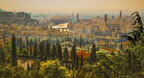 Verona Panorama von Colin Metcalf