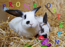 Frohe Ostern 3 von Sandra Opolka