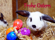 Frohe Ostern 2 by Sandra Opolka
