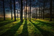 Sonne am frühen Morgen by Stefan Kierek