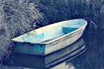 Das Boot von Ronny Schmidt