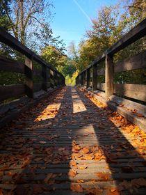 Herbstliche Brücke von Ronny Schmidt