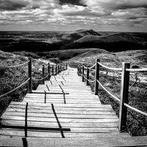 Der Weg von Katrin Raabe