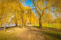 Herbstweiden 83 by Erhard Hess
